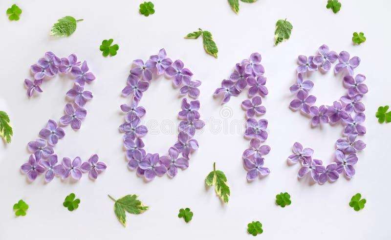 新年2019年在白色背景的淡紫色花 库存照片