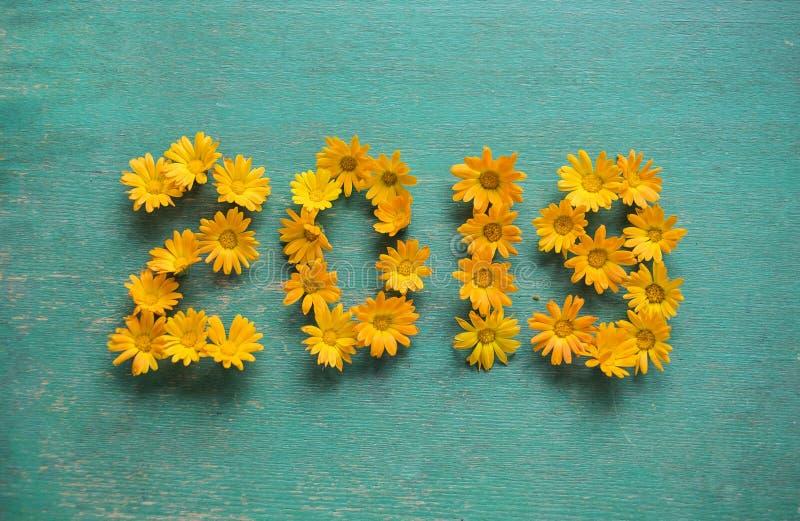 新年2019年在蓝色背景的黄色花 免版税库存照片
