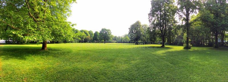 新建工程项目的建筑场地在绿色草甸,建筑区域的剧情 免版税库存照片