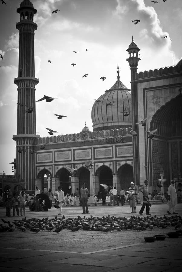 新德里jama的masjid 库存照片