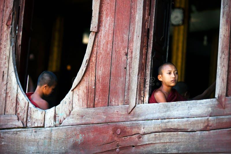 新手修士,缅甸 免版税库存照片