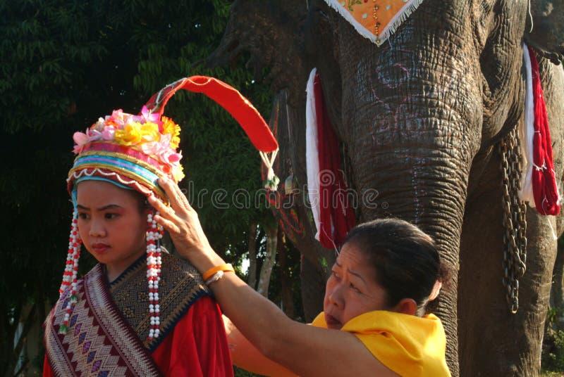 新手礼服Si Satchanalai大象后面整理的Proce 免版税图库摄影