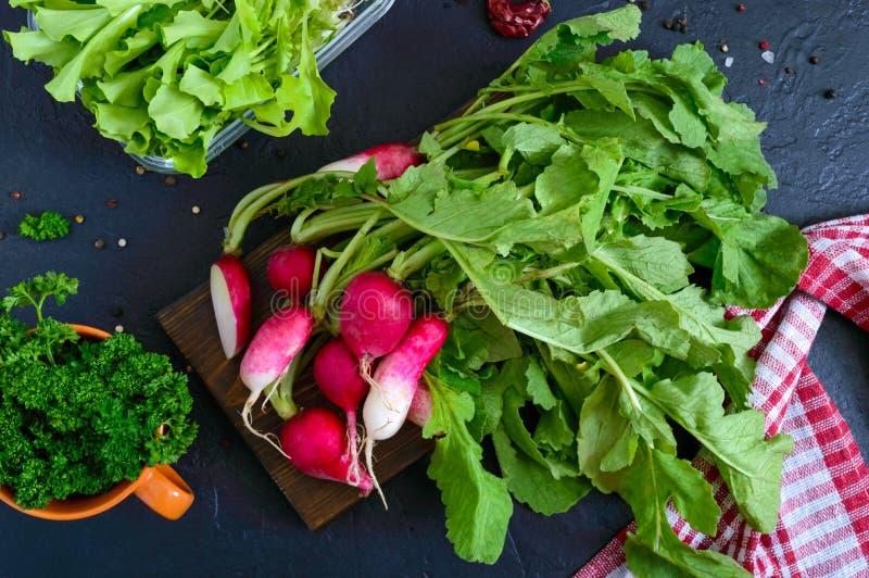 新有机绿色 萝卜,卷曲荷兰芹,在黑背景的年轻莴苣 免版税库存图片