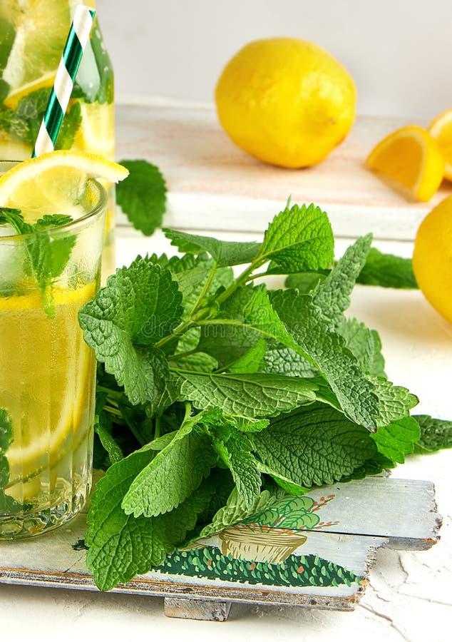 新束薄菏和一块玻璃用柠檬水在一个木板 库存照片