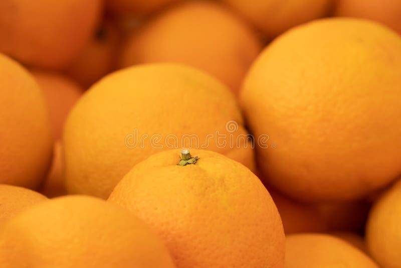 新桔子极端特写镜头选择聚焦背景充分的框架 有维生素C的新鲜的柑橘水果丰盈富有 免版税库存图片