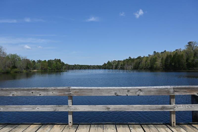 新泽西州立公园湖 库存照片