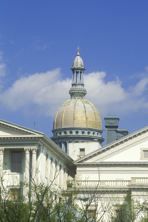 新泽西的状态国会大厦, 免版税库存照片