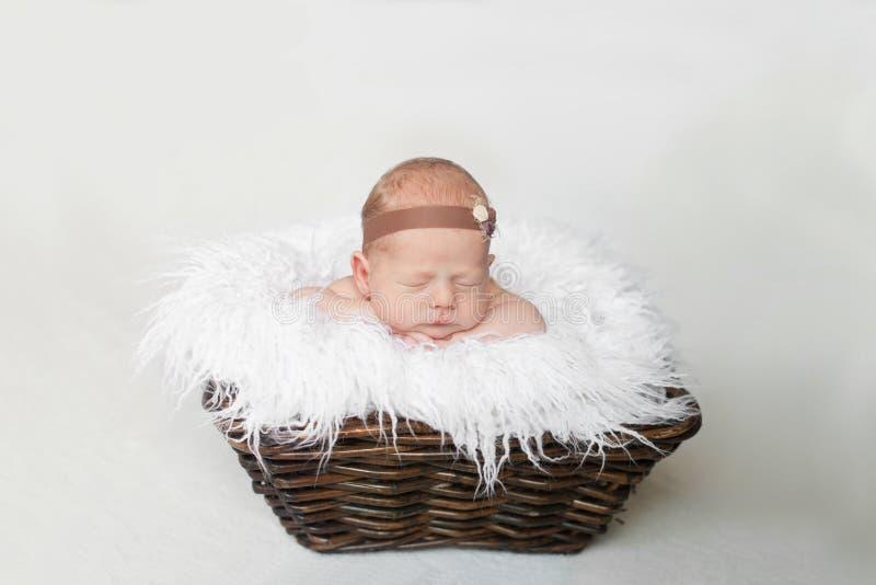 新生儿在白色格子花呢披肩的一个棕色篮子睡觉 免版税库存照片
