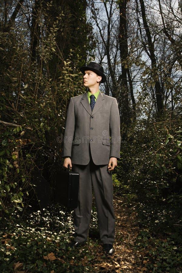 新生意人的森林 库存照片
