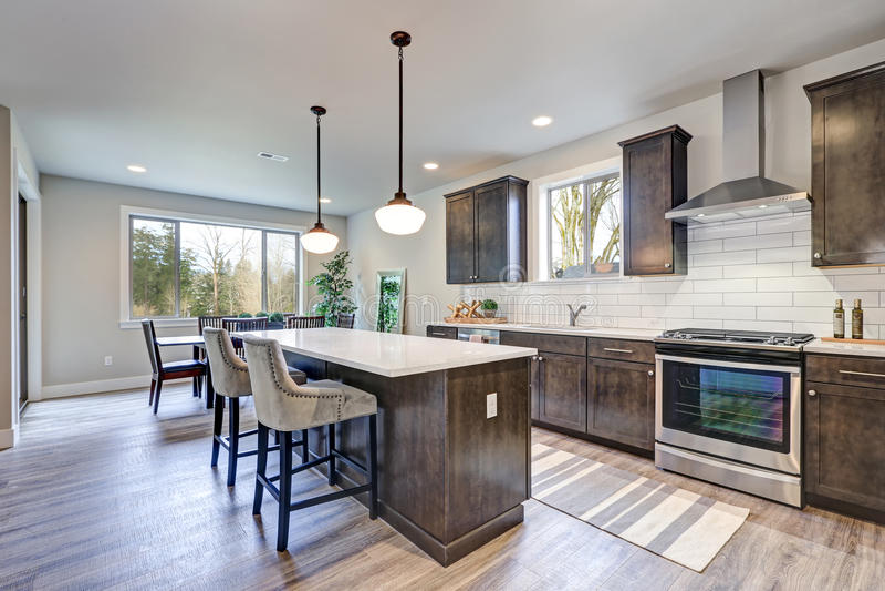 新的厨房吹嘘黑暗的木内阁,大海岛 库存图片