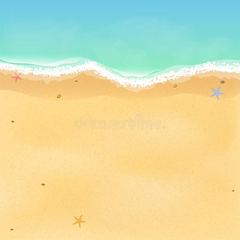 新的成人 一个异乎寻常的空的海滩的顶视图与海星和贝壳的 您的项目的一个地方 有波浪的泡沫似的海 Vec 向量例证