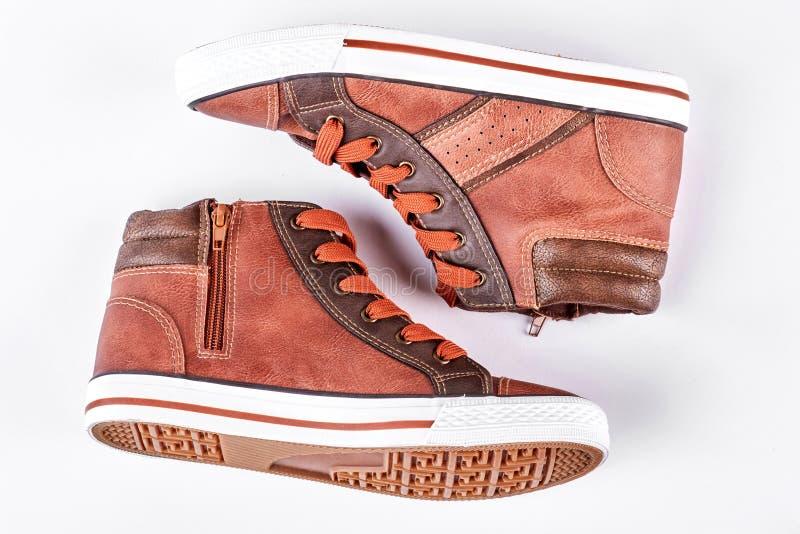 新的棕色运动鞋,白色背景 库存图片