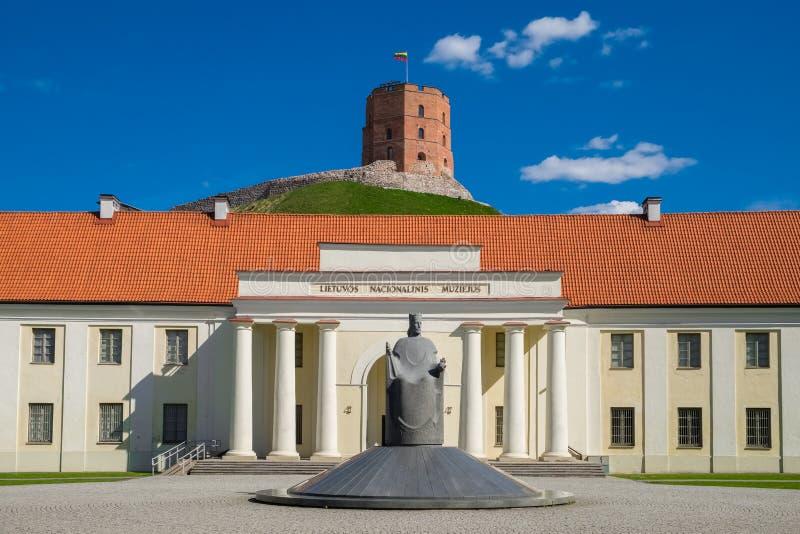 新的武库,立陶宛, Gediminas塔,维尔纽斯,立陶宛门面  库存照片