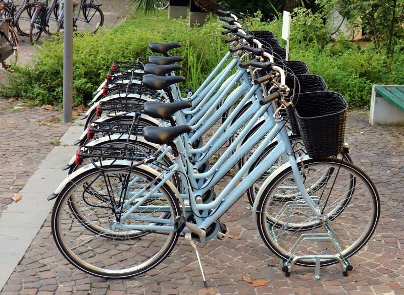 新的相同蓝色妇女自行车在边路排队了 免版税库存图片