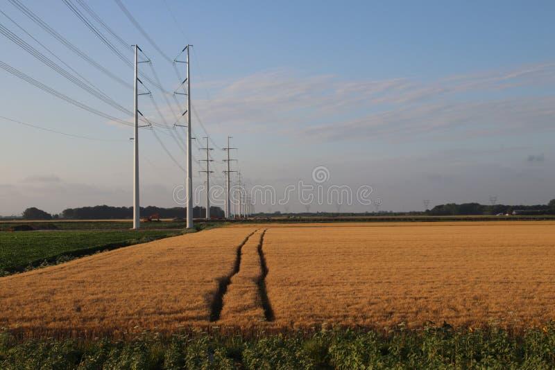 新的输电线在朝向到莱顿的Bleiswijk的开拓地作为380Kv圆环一部分在荷兰 库存照片