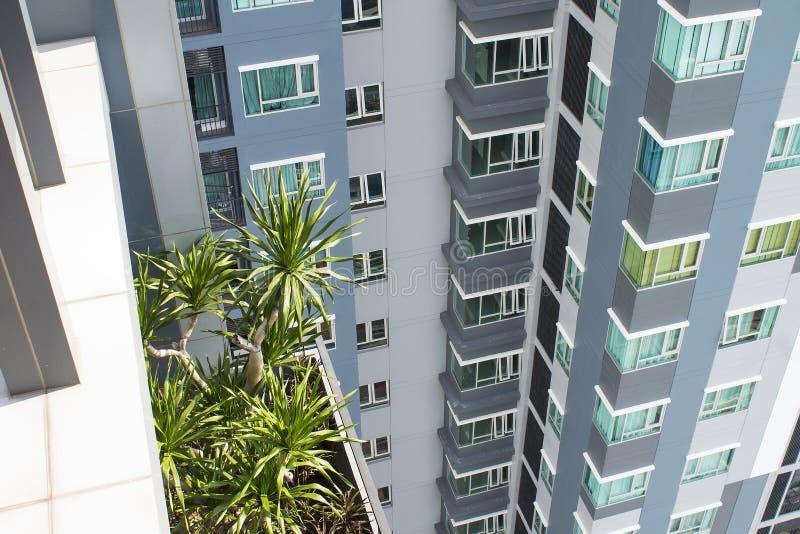 新的高层建筑物在亚洲 棕榈 免版税库存图片