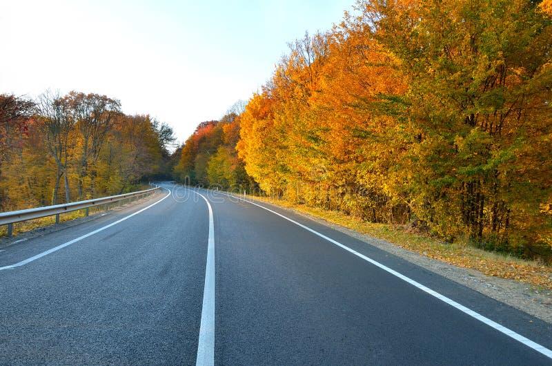 新的高速公路 免版税库存照片