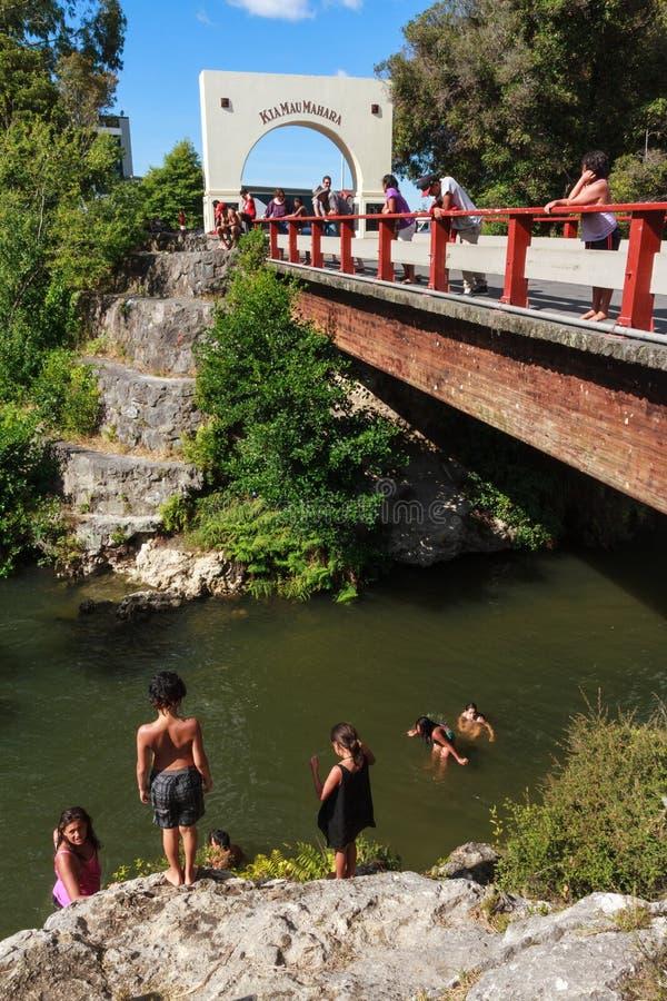 新的rotorua西兰 入口和桥梁, Whakarewarewa 免版税库存图片