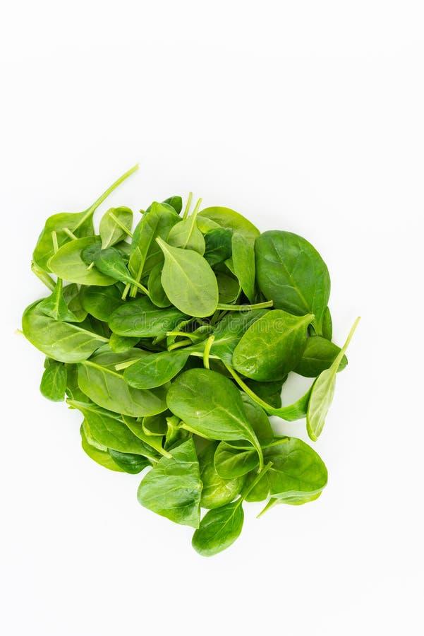 新绿色在白色背景留下菠菜被隔绝 健康和戒毒所概念 库存图片