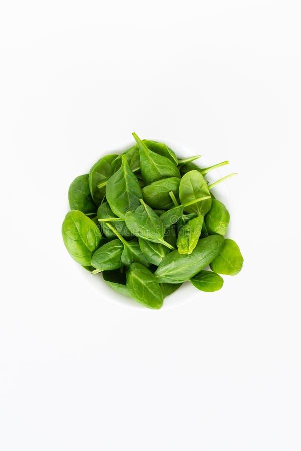 新绿色在白色背景留下菠菜被隔绝 健康和戒毒所概念 免版税库存图片