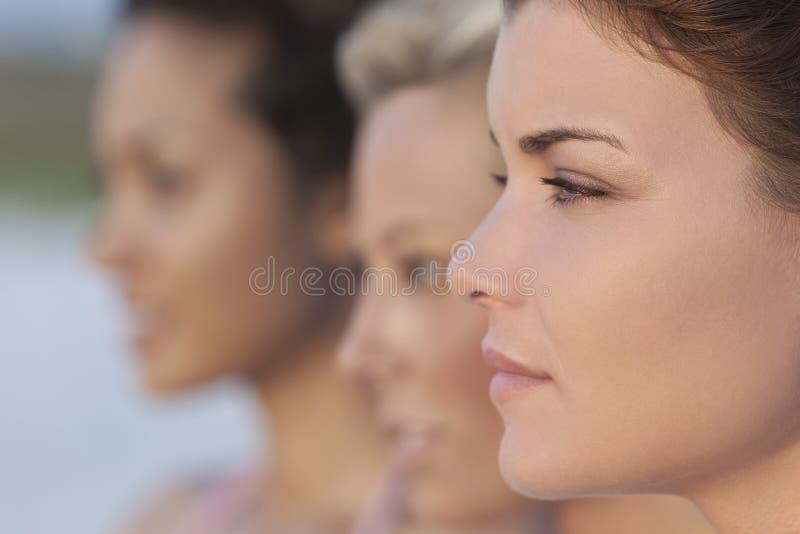 新美丽的配置文件三的妇女 免版税库存照片
