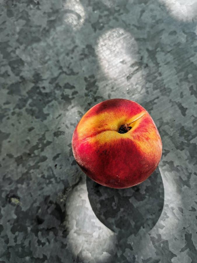 新美好的小组在黑暗的背景的桃子在庭院里 免版税图库摄影