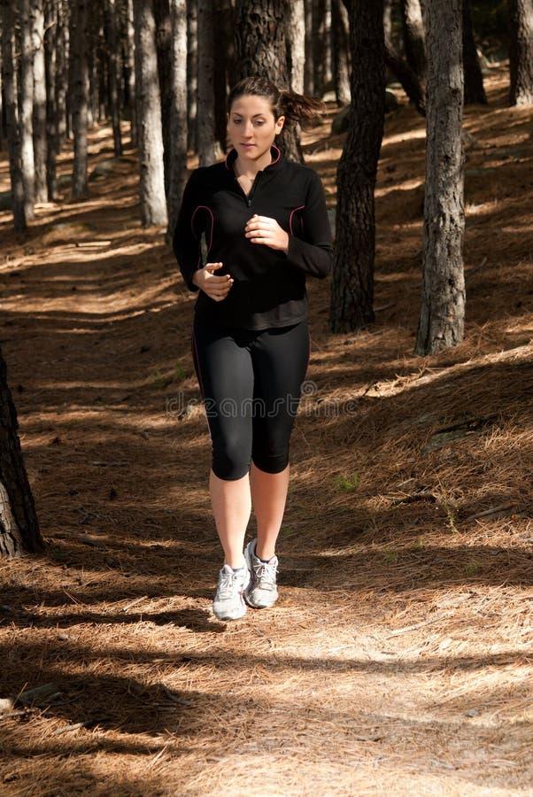 新背景室外连续妇女的森林 免版税库存图片