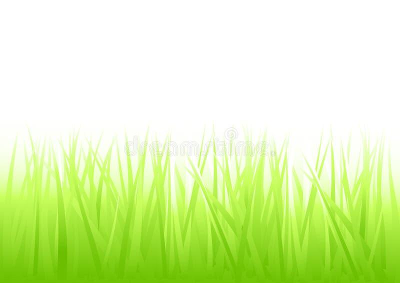 新草绿色 向量例证