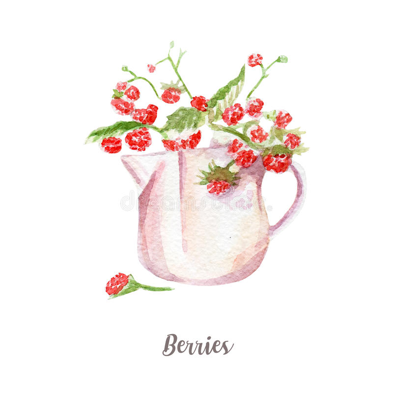 新莓果例证 在白色背景的手拉的水彩 向量例证