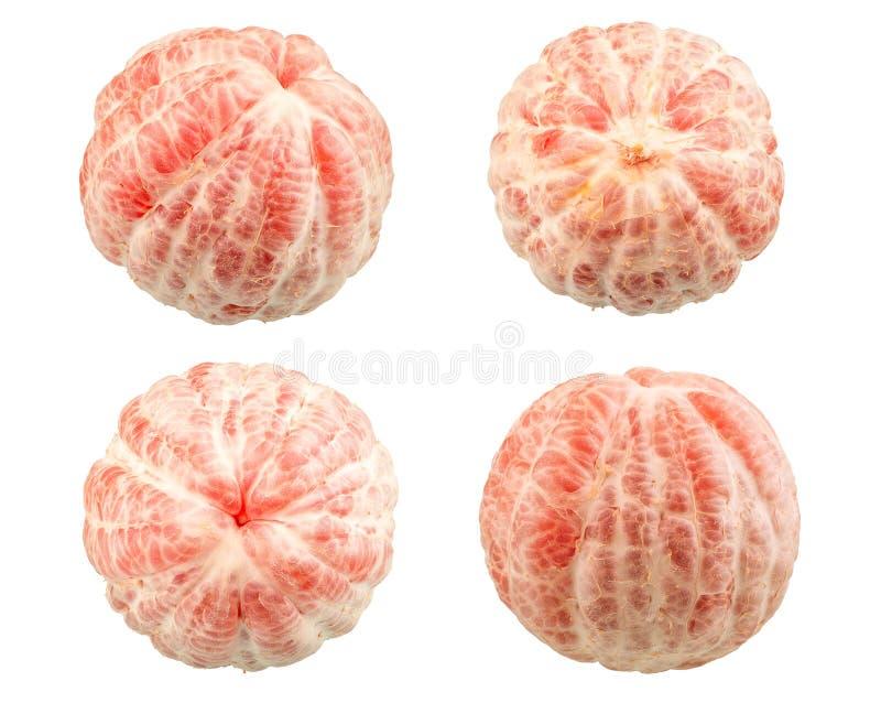 新葡萄柚红色 库存照片