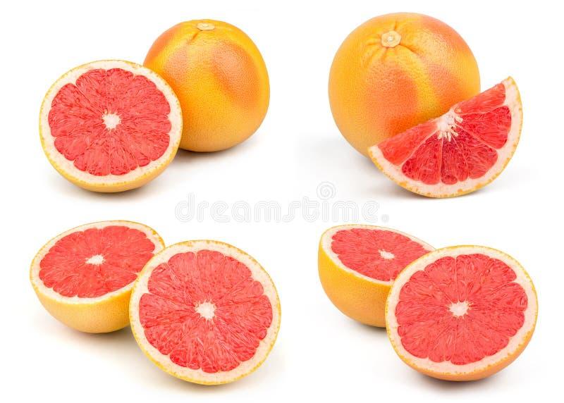 新葡萄柚红色 免版税库存图片