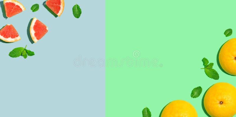 新葡萄柚边界 皇族释放例证
