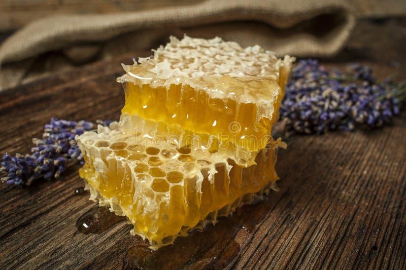 新蜂蜜关闭 免版税库存照片