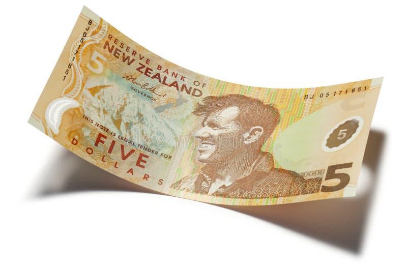 新西兰五美元金钱 库存图片