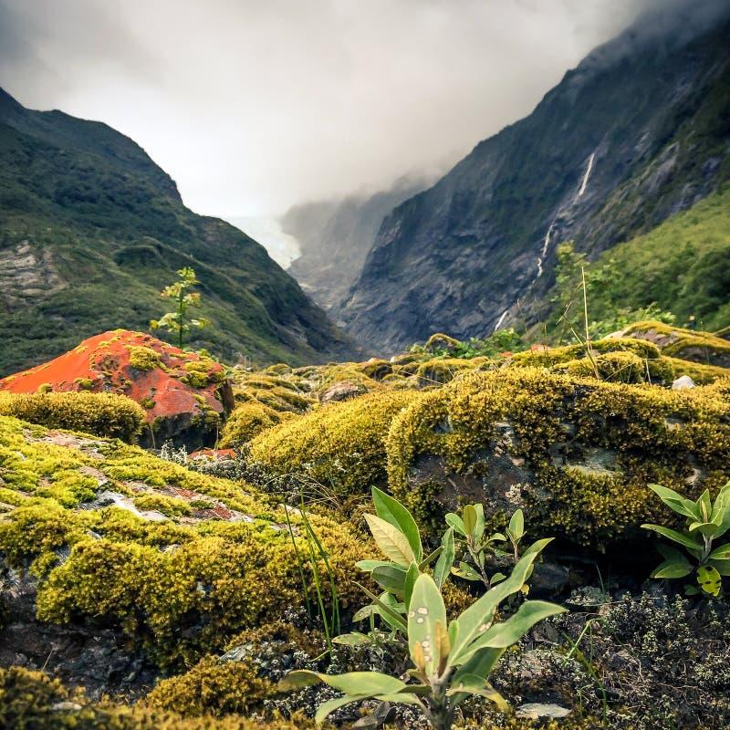 新西兰冰川 免版税库存图片