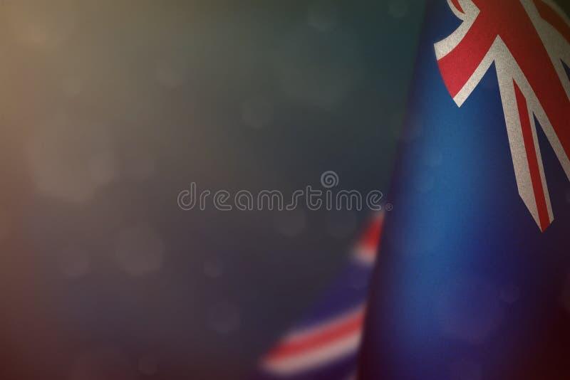 新西兰纪念退伍军人日或阵亡将士纪念日的旗帜 蓝色深天鹅绒战争概念新西兰英雄的荣耀 免版税库存图片
