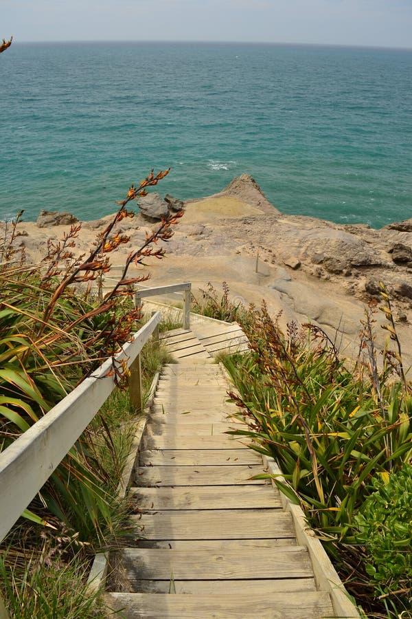 新西兰美丽的海岸Castlepoint 库存图片
