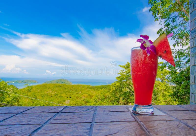 新西瓜震动和全景视图 免版税库存图片