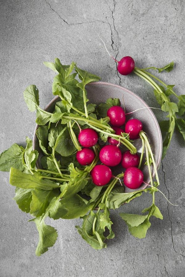 新近地在灰色具体背景的被收获的,紫色五颜六色的萝卜 E r 季节性烹调,食物 免版税库存照片