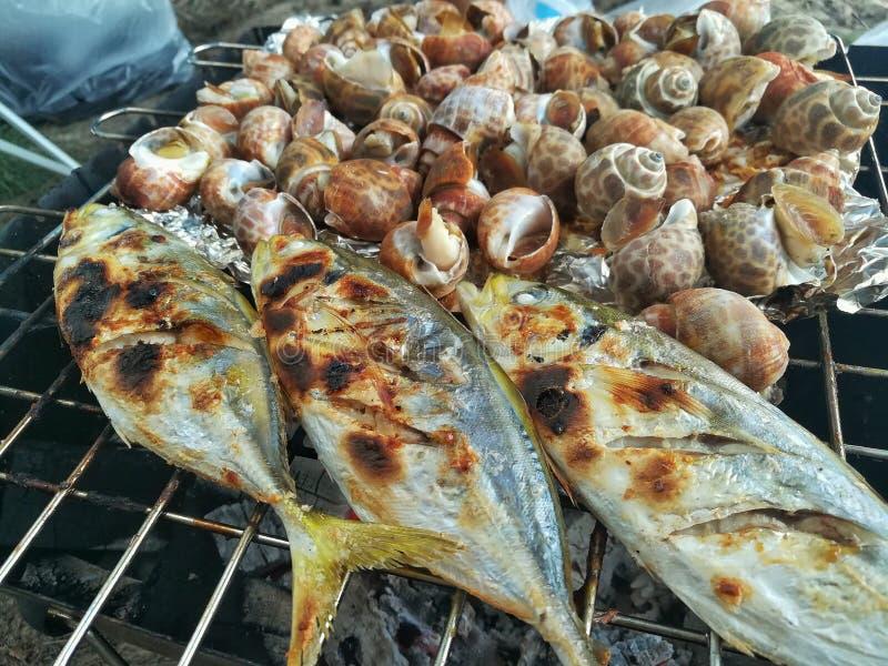 新近地烤海鲜,虾,螃蟹,鱼,乌贼,贝类 库存照片