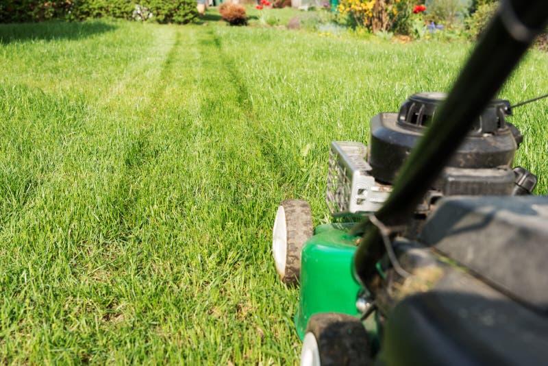 新近地被割的草坪在有割草机的庭院里 库存图片