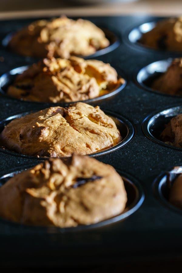 新近地被烘烤的素食主义者香草巧克力碎片松饼行  免版税库存照片