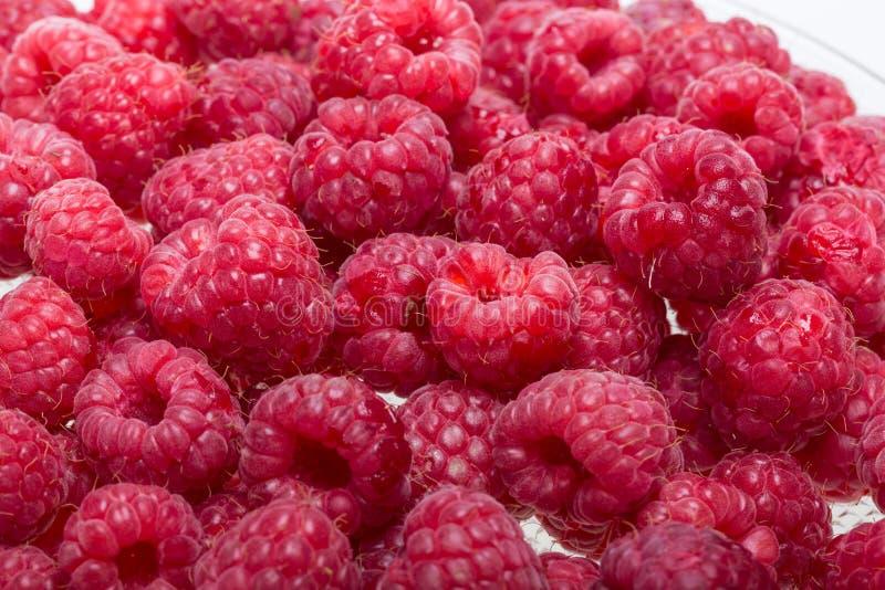 新近地被采摘的成熟红草莓 免版税库存图片