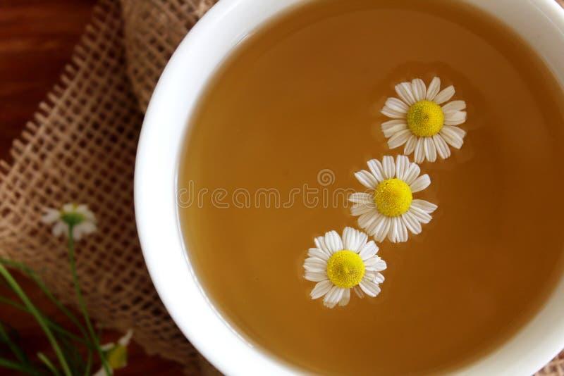 新近地酿造的甘菊茶 免版税图库摄影