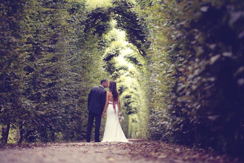 新郎和新娘在Schonbrunn庭院里 免版税库存照片