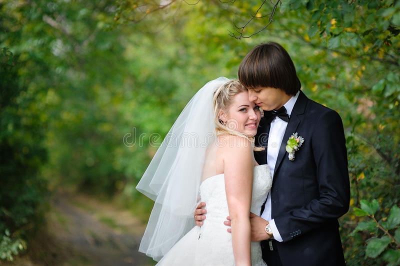 新郎在夏天公园拥抱步行的新娘 库存图片