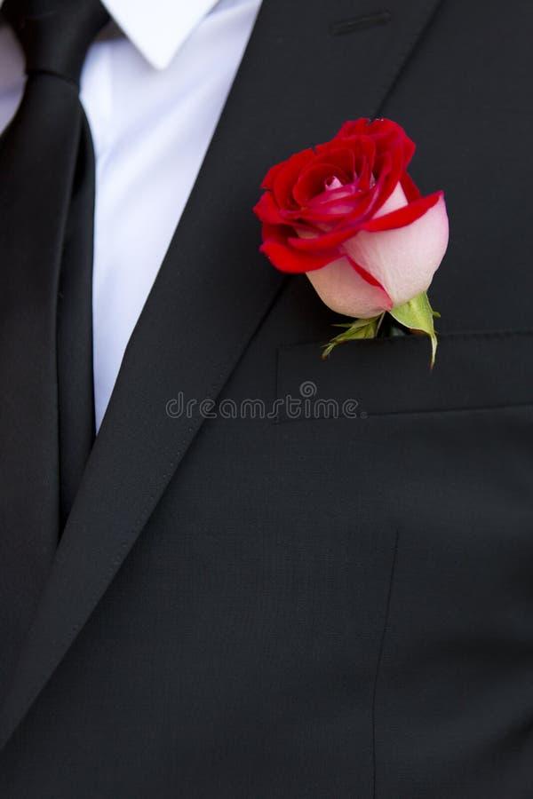 新郎钮扣眼上插的花有红色玫瑰的 免版税图库摄影