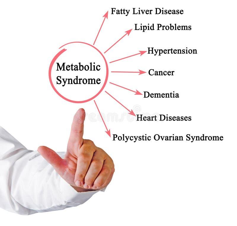 新陈代谢的综合症状的后果 免版税库存图片