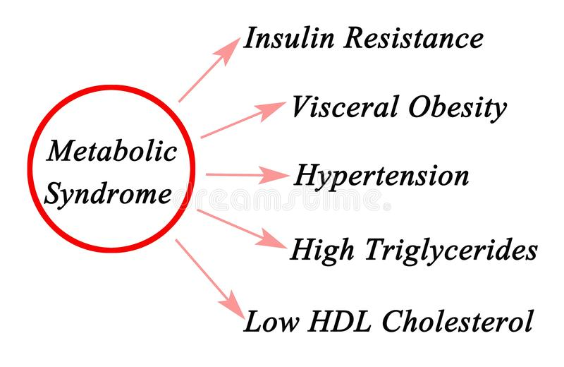 新陈代谢的综合症状的症状 库存例证