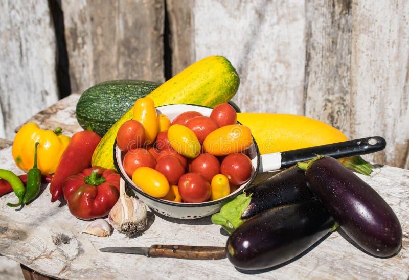 新鲜和健康有机蔬菜夏天收获  库存照片